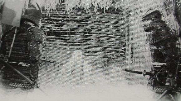 蜘蛛巣2.jpg